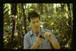 Nathan Erwin bands birds in Belize, in January 1991. Photo by Linda Hollenberg, Smithsonian Institution.