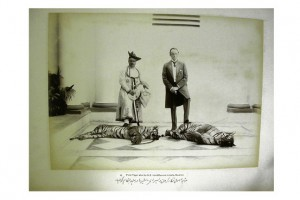 'First Tiger shot by H.E. Lord Curzon in India, with Maharaja Madho Rao Scindia' (1899).