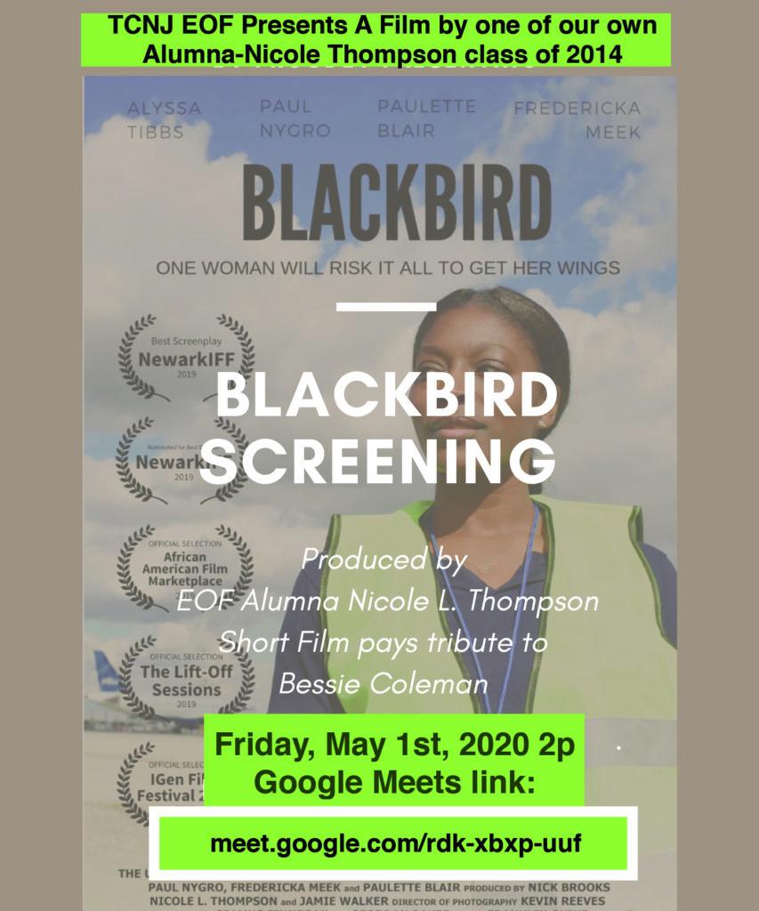 Black Bird Flyer